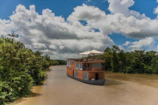 Rainfores-MV-Cattleya-Profile