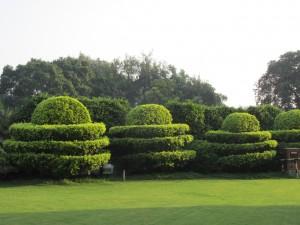 itc maurya new delhi garden