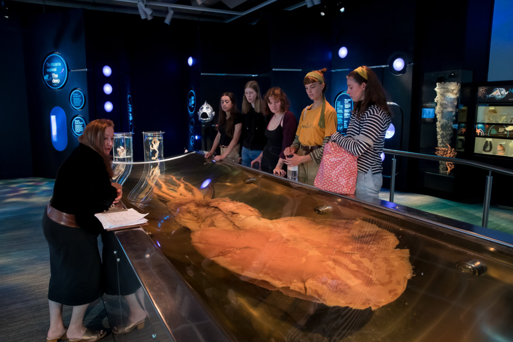 New Zealand, Colossal Squid Exhibit