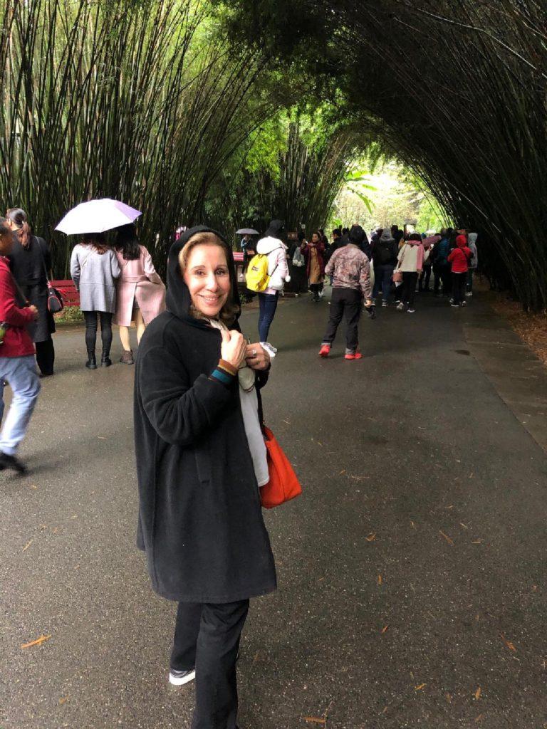 panda park, Chengdu